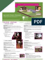 Jarduera pedagogikoak  / Actividades Pedagógicas 2011-2012
