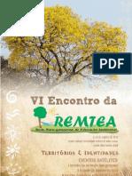 6remtea_caderno_resumos
