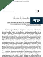 95-sistemas_silvopastoriles