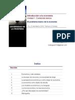 El_problema_basico_de_la_economia