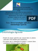 .Slides Entomologia