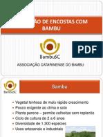 BAMBU - PROTEÇÃO DE ENCOSTAS