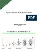 Elaboracion de Ensilaje.p