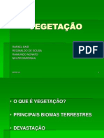 VEGETAÇÃO-IFES
