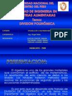 Division d Polinomios