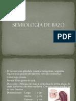 6 - Semiología de Bazo