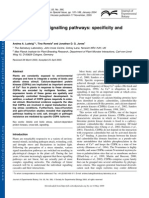 CDPK-Mediated Signalling Pathways Specificity and Cross-talk