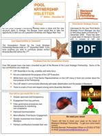 BSP Review Newsletter 3