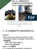 TEMA 15. Procesos Petroxenéticos Internos.vulcanismo