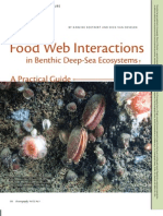 Food Web Interactions