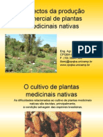 Aspectos Da Producao Das Plantas is Nativas Ilio Montanari Jr