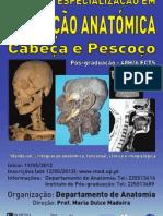Curso de Especialização em Dissecção Anatómica - Cabeça e Pescoço