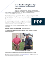 Education du cheval avec Stéphane Bigo