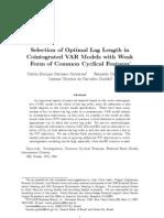 Carrasco - Selection of Optimal Lag Length in VAR
