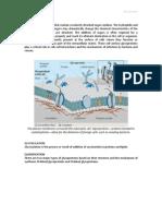Biochemistry of Glycoprotein
