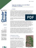 Doenças do eucalipto no sul do Brasil