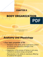 8 Body Organization