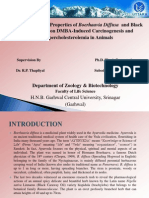 Ph.D.Presentation1