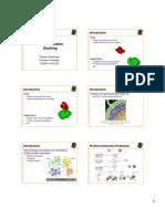 Protein Protein Docking