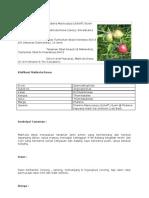 Info Herba