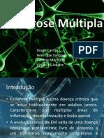 Trabalho de Neuroanatomia Pronto