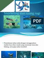 Snorkeling Dan Ruang Rugi