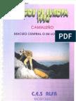 PICOS DE EUROPA 1994 CAMALEÑO
