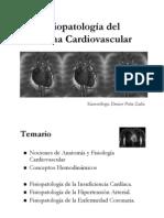 Clase Cardiovascular 2011