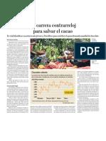 La carrera contra el reloj para salvar el Cacao