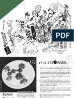 DHC34 pdf