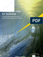 ERNEST YOUNG Business Risk Report 2010