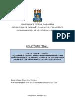 Relatorio Final Probex 2012 Diogo