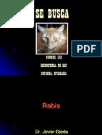 Clase Rabia Mayo