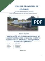 Perfil Puente 01 Sendamal