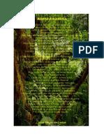 Alerta Amazônia Poesia