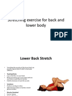 Stretching Exercise for Back and Lower Body
