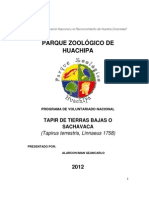 Tapir de Tierras Bajas o Sachavaca