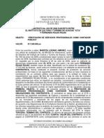 Contrato de Contador