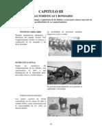 Manual de Bufalos-3