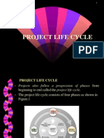Chapter 3 Project Life Cycle