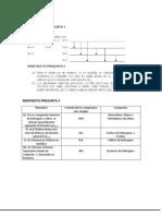 Modelo de Respuesta Quimica 209