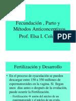 Fecundacion Y PartoCECIMAT31 de Marzo