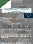Diapositivas de Defensa de Tesis de Grado