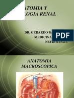 Anatomia y Semiologia Renal (I)