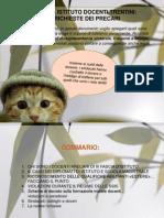 Documento Sindacati Trentini3