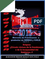 Magazine Región del Maule Sur-Chile 6