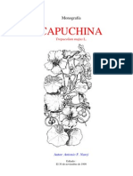 Capuchina
