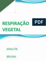 respiraçao vegetal
