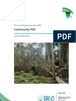Community Payments for Ecosystem Services (PES)
