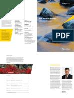 Globalization Report FINAL